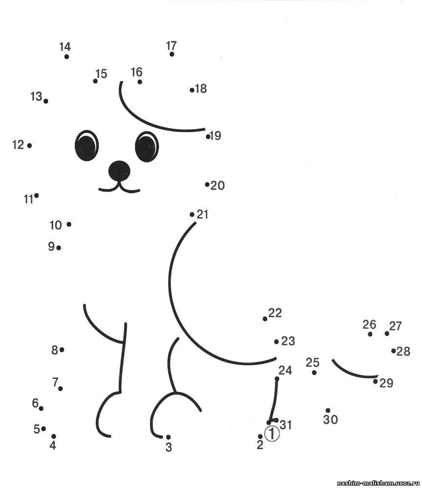 Рисунок по точкам кот